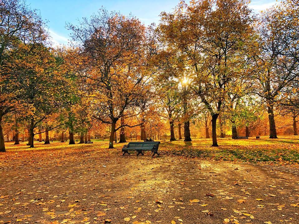Primera vez en London Green Park